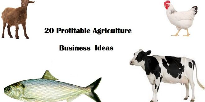 Best Profitable Agriculture Business Ideas with low investment for